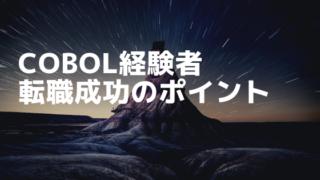COBOL経験者の転職成功のポイント